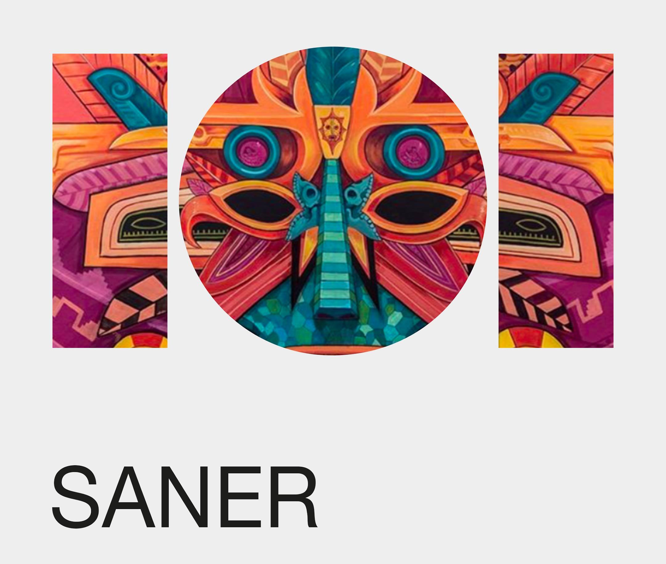SANER_IG